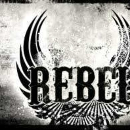 Cover of track Everyday Rebel by skatebreeze504
