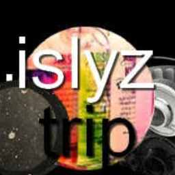 Cover of track The trip by islyz