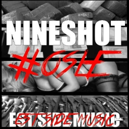 Cover of track VALLEE by Nineshot
