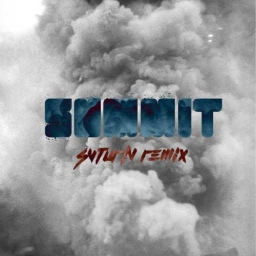 Cover of track Summit (Svturn Remix) by ford.