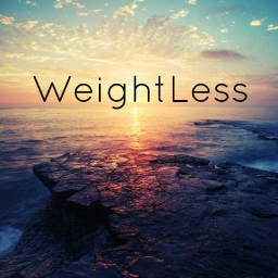 Cover of track WeightLess by DubLion
