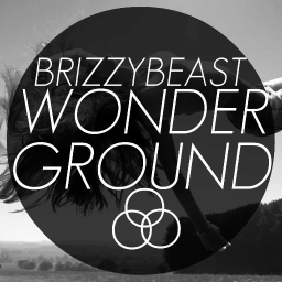 Cover of track Wonderground by DELETED