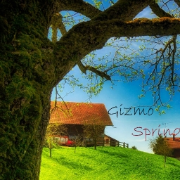 Cover of track Spring by Gizmo