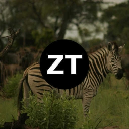 Cover of track Zebra by Zander Tower