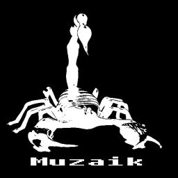 Avatar of user Muzaik