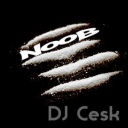 Cover of track Nooob Zong by DJCesk