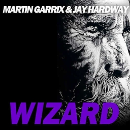 Cover of track Martin Garrix ft. Jay Hardway - Wizard Remix by MeyKing