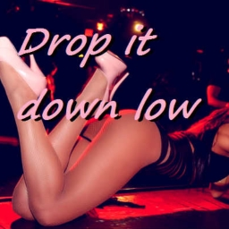 Cover of track Drop it down low by SikGoRe