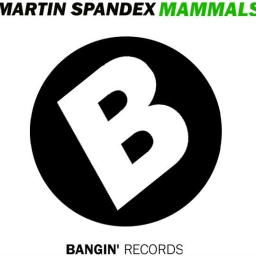 Cover of track Martin Spandex - Mammals by Bangin' Records