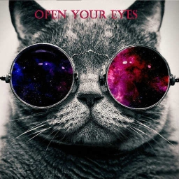 Cover of track open your eyes (remix competition) by The OYE Project