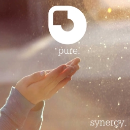 Cover of track Pure by Synergy