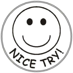 Cover of track Nice Try by Martin Zoutewelle