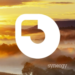 Avatar of user Synergy