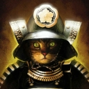 Cover of track Samurai Cat (Ft 11 People) by big moist