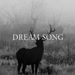 Cover of track Dream Song by TIK TIK BOOM