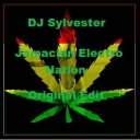 Cover of track Jamacian Electro Nation (Original Edit) by DJSylvester