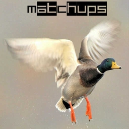 Cover of track Duck 4 - MatChups by MatChups