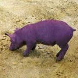 Cover of track Purple Pig by TheBlueBroccoli