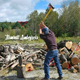 Cover of track Illuminati Lumberjacks (Jeremy Audley Remix) by Wilsby