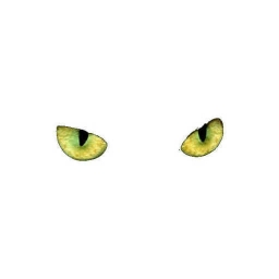 Cover of track cats eyes *WIP* by Funkra