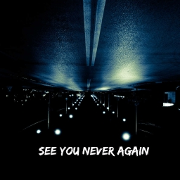 Cover of track See You Never Again by Xavi