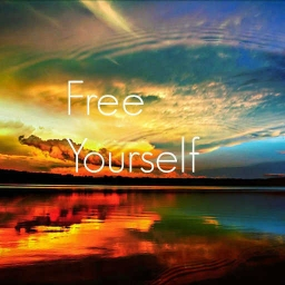 Cover of track Free Yourself by DubLion
