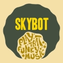 Cover of track DISCO FUNK by SKYBOTDJ