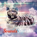 Avatar of user SoundsSmash®