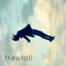 Cover of track Freefall (T.H.E. Enigma Remix) by Bruklyn