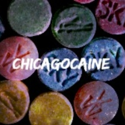 Avatar of user ChicagoCaine
