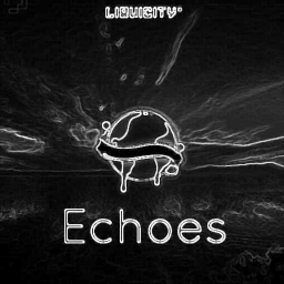 Cover of track Echoes (Remix) by PagodooM
