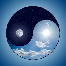 Avatar of user Yin-and-Yang