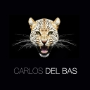 Avatar of user Carlos del Bas