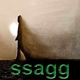 Avatar of user ssagg