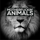 Cover of track Animals (SolidTrap Remix) by SolidMusic