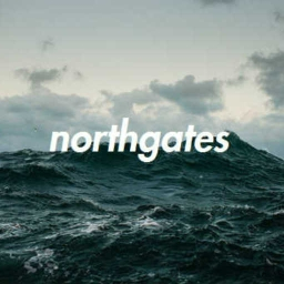 Cover of track OVERDOSE by northgates