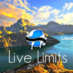 Cover of track Live Limits by DubLion