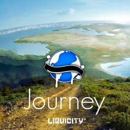 Cover of track Journey by DubLion
