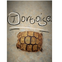 Avatar of user Tortoise.