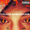 Cover of album Vulgar Ambassador Mixtape  by http://www.audiotool.com/