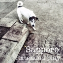 Cover of album Extended Play by sapporo