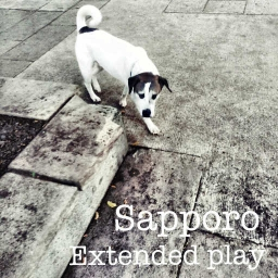 Cover of track Earth and Stuff (mixed in a normal way) by sapporo