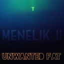 Cover of album Unwanted Fat by Menelik II