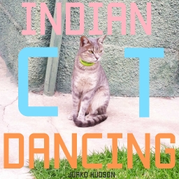 Cover of track Indian Cat Dancing by JuakoLN