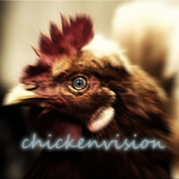 Avatar of user chickenvision
