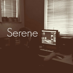 Cover of track Serene by DubLion