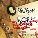 Cover of track Work (Electro House VIP) by Tantrum