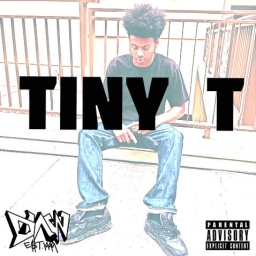 Cover of track 1999 by TINY TEE INTL.