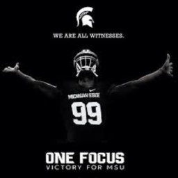 Avatar of user Msu Spartanfan