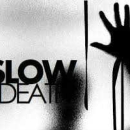 Cover of track Slow Death by Maestro